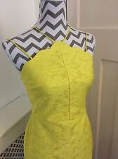 Topshop Yellow Lace Scallop Hem Bodycon Dress, Size 10, Tall New