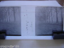 2 photos plaque verre negative et positive ANGERS bords de la MAINE