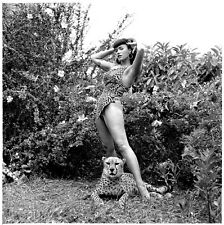 BETTIE PAGE PHOTO COLLECTION - OVER 3700 QUALITY PHOTOS & VIDEO BONUSES!