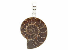 "AMMONITE  Pendant 925 Sterling Silver 100% natural  1 3/8"" Long  (#1)"