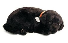 Perfect Petzzz BLACK LAB puppy dog Plush battery powered breathing toy