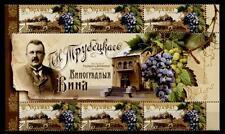 Weinbau. Rebsorte Cabernet Sauvignon. 6W+Zf. Ukraine 2010