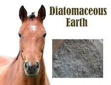 Natural HORSE FOOD SUPPLIMENT WORMER & MITE KILLER 25Kg Sack DIATOMACEOUS EARTH