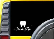 Tooth Life K698 6 inch decal vinyl sticker