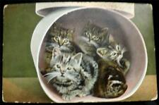 """OLD POSTCARD OF CATS / KITTENS """"KROMO"""" SERIES No T 21682"""