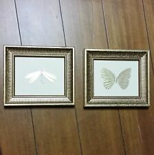 Set of Gold Framed Butterfly Dragonfly Hanging Art Kohls Decor Insect