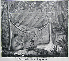 Puri Indianer in ihrer Hütte Hängematte Brasilien Lithographie 1838 Puris Brasil