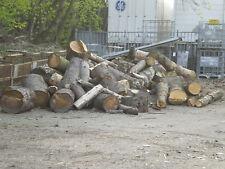 6 SRM Stammholz Brennholz in scheiben aller größen zum selber spalten