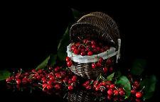Incorniciato stampa-ANCORA VITA Cherry's in un cesto di vimini (PICTURE POSTER FRUTTA ART)