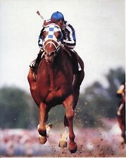 SECRETARIAT 1973 BELMONT WINNER HORSE RACE 8X10 PHOTO