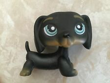 Littlest Pet Shop RARE Dachshund Dog Puppy #325 Black Tan Brown LPS