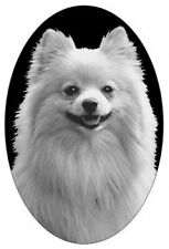 """4""""X6:"""" POMERANIAN static cling etched glass window decal, for vehicles, home"""
