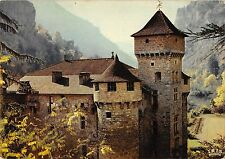 BT10870 Les gorges du tarn le chateau de la caze       France