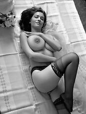 60s Nude Pinup Lying on back ceaseless DDD breasts 8 x 10 Photo