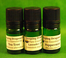 3 Basics Pure Essential Oils Set 5mL Lavender, Tea Tree, Peppermint, Green Glass