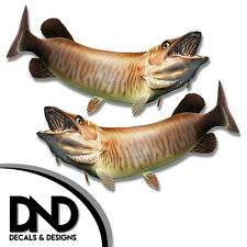 "Tiger Musky - Fish Decal Fishing Tackle Box Bumper Sticker ""3in SET"" F-0890 D&"