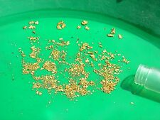 2 OZ GOLD concentrates panning paydirt Guaranteed GOLD!! BUY ONE GET ONE Free