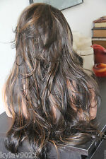 Beautiful Wavy Brown/Honey Blonde Lace Front Wig 4/27 Heat Safe