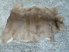 ROE DEER SKIN FUR HIDE RUG PELT TAXIDERMY HOME DECOR HUNTING FIREPLACE