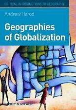 Geographies of Globalization: A Critical Introduction (Critical Introductions to