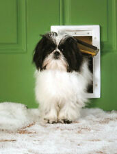 PetSafe Extreme Weather Small Dog or Cat Pet Door