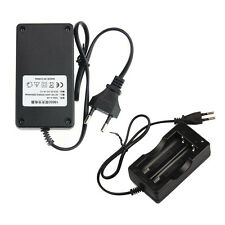 AC 110V 220V Dual Charger For 18650 3.7V Rechargeable Li-Ion Battery EU Lucky