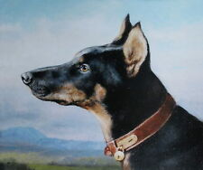 Vintage art 1 Doberman Pincher by Carl Reichart