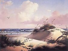 """Seaside Treasury"" by Dalhart Windberg"