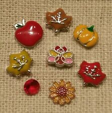 THANKSGIVING Turkey Leaves Pumpkin Floating Charms& Origami Owl Stardust Crystal