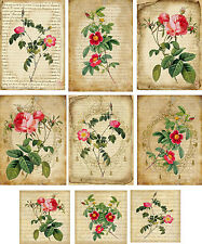 Vintage inspired roses with mini cards tag blank small  ATC altered art  set 7