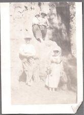 VINTAGE 1919-29 SEQUOIA NATIONAL PARK CALIFORNIA HUGE REDWOOD TREE OLD PHOTO