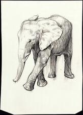 HUGH LAIDMAN Rare & Large Original c1960s-70s Estate Drawing of an ELEPHANT