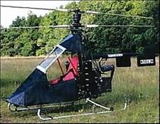 Eagles Perch USA Ultralight  Helicopter Desktop Dried Wood Model Regular
