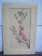 Sweet Cherry Blossom Still Life Floral Watercolor on Paper Painting G. Scheweiz