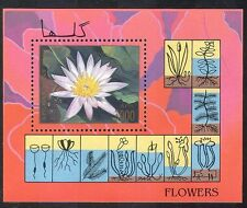 Afghanistan 1997 Aquatic Plants/Flowers/Nature/Water Lily 1v m/s (n39895)