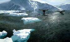 "John Seerey Lester "" Fluke Sighting Humpback Whales "" #13/290 Mint $700 Value"
