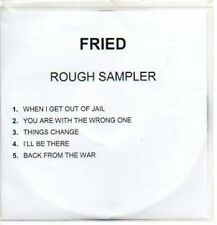 (299J) Fried, Rough sampler - DJ CD