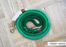 OMBRE DOG LEASH - FOREST GREEN (small)