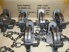 6 New Duke # 2 OFFSET Coil Spring Traps  Raccoon Beaver Fox Coyote Trapping 0491