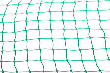 DJA Anti Bird Net  Extra Thick & Strong Quality  8 ft by 10 ft Green colour
