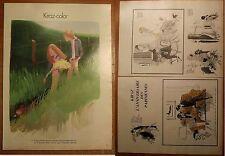 Dessin  presse Kiraz,anniversaire des parisiennes, 1972, clipping