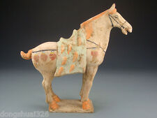 Rare Wonderful Chinese Tang Dynasty Colored Pottery Aga War Horse Statue