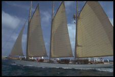257048 St Tropez Yacht Race Three masted Ketch A4 Photo Print