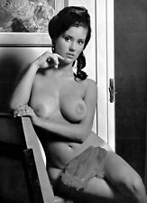 1960s nude pinup sitting pose D Breasts Candy Earle 8 x 10 Photograph