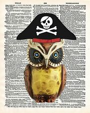 Pirate Owl Art Print 8 x 10 - Dictionary Page - Pirate Bird - Nautical - Kitsch