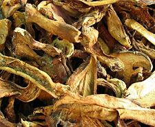 Boletus luteus mushroom dried 300 g, Grade A Yellow porcini
