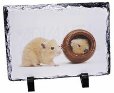 Hamsters in Play Pot Photo Slate Christmas Gift Ornament, HAM-2SL