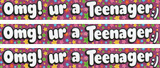 OMG UR A TEENAGER/ AGE 13TH BIRTHDAY BANNER WITH MULTI COLOUR STARS (EX)