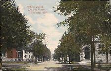 Jackson Street Looking North in Bay City MI Postcard