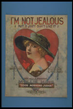305036 Im Not Jealous But I Just Dont Like It Copyright 1919 A4 Photo Print